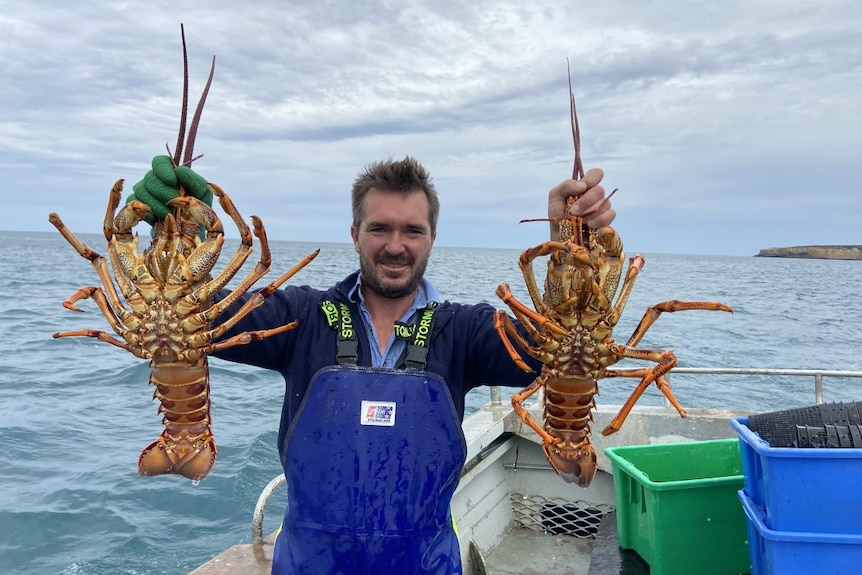 A man on a boat at sea holds up two lobsters.