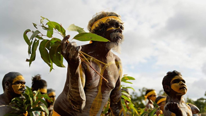 Indigenous dancer holding gum leaves and wearing yellow body paint.
