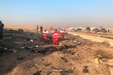 Rescue workers in red suits are seen looking over the wreckage of a plane. There are several emergency services vehicles.