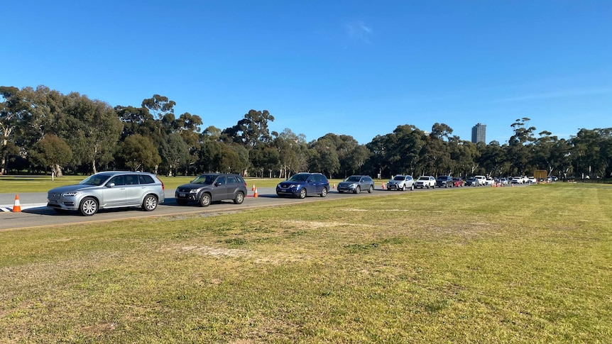 Dozens of cars lined up for coronavirus testing at Adelaide's Victoria Park.