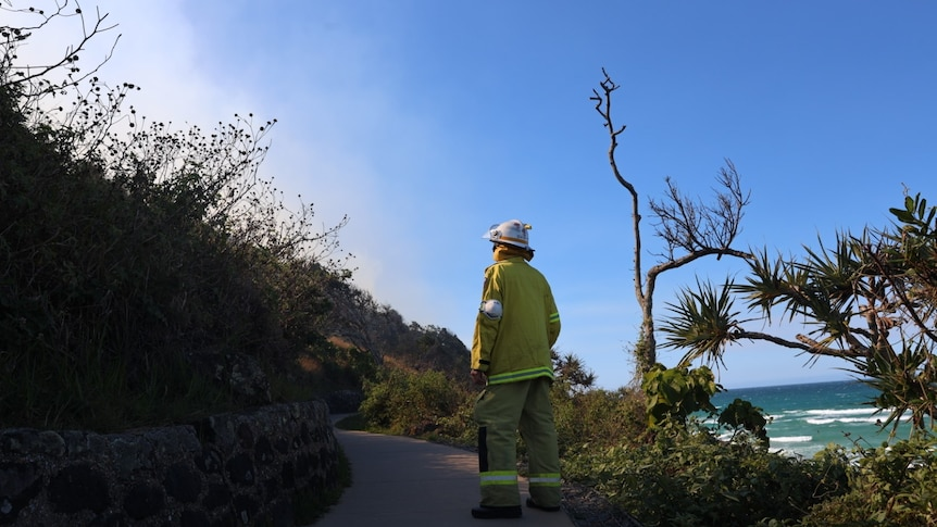 A fire fighter standing facing a smoke covered hill. He's wearing yellow protective gear and a helmet.