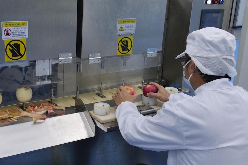 A man sits infront of an apple peeling machine