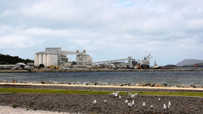 Bee pest surveillance at Albany port has not taken place in the last eighteen months