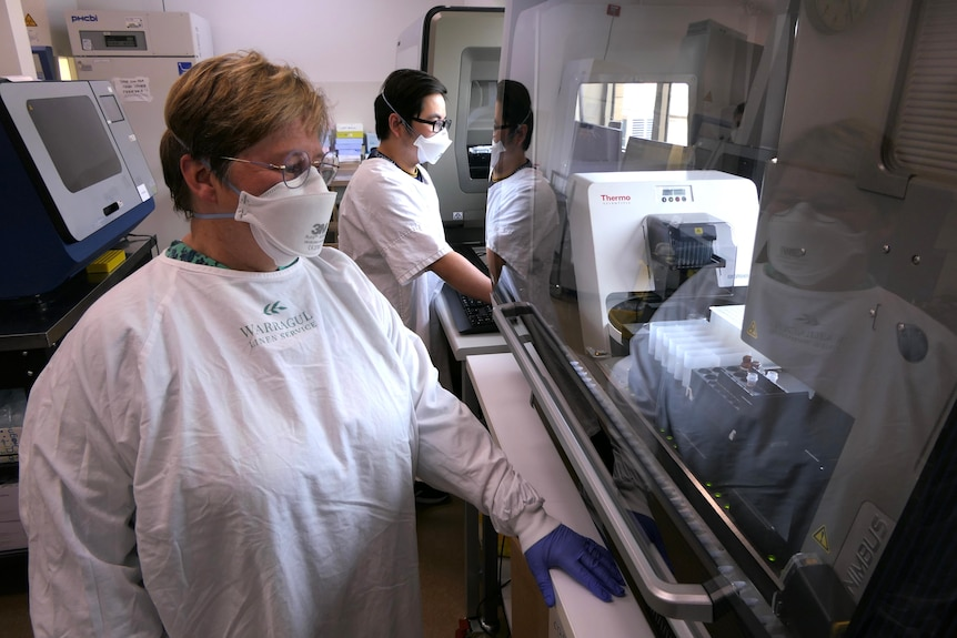 A man and a woman in PPE look at a medical machine.