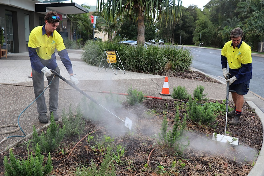 Byron Shire Council staff doing steam weeding