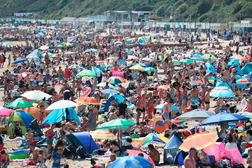 Crowds packed at a beach.