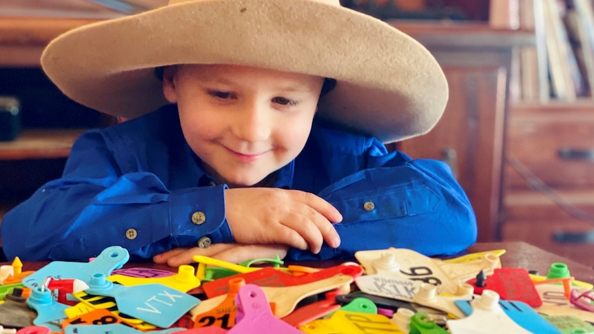 A young boy in a large hat and a work shirt looks over his prodigious collection of ear tags with a satisfied smile.