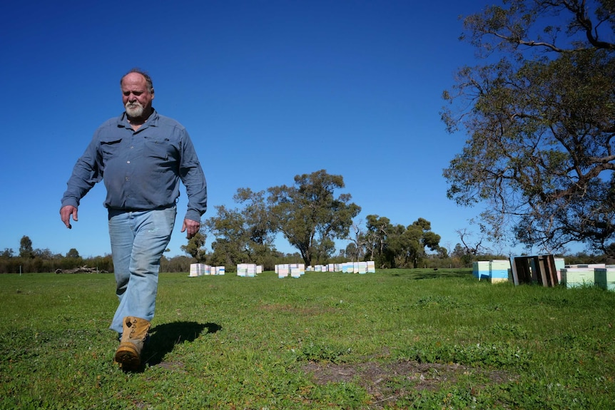 Fourth generation beekeeper Kim Fewster walking near hives at his Muchea property in July 2020.