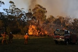 The Peats Ridge blaze is the most serious in NSW.