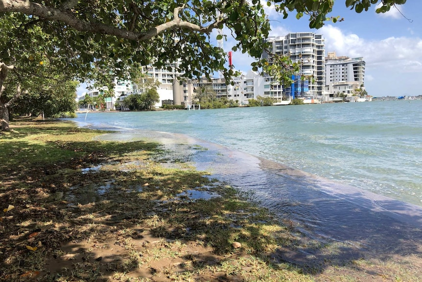 Water flows over the retaining wall at Cotton Tree and into the park area.