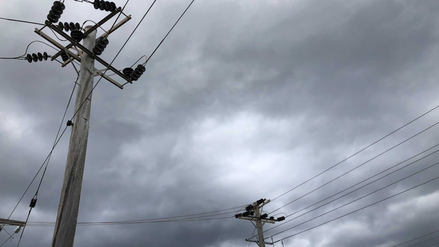electricity poles and wires under a grey sky
