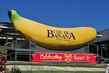 The Big Banana at Coffs Harbour.
