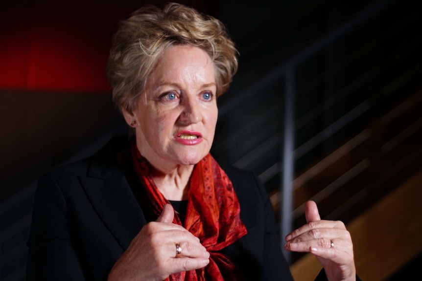 Alannah MacTiernan wearing a red scarf and black top sits in a room, talking to a journalist.