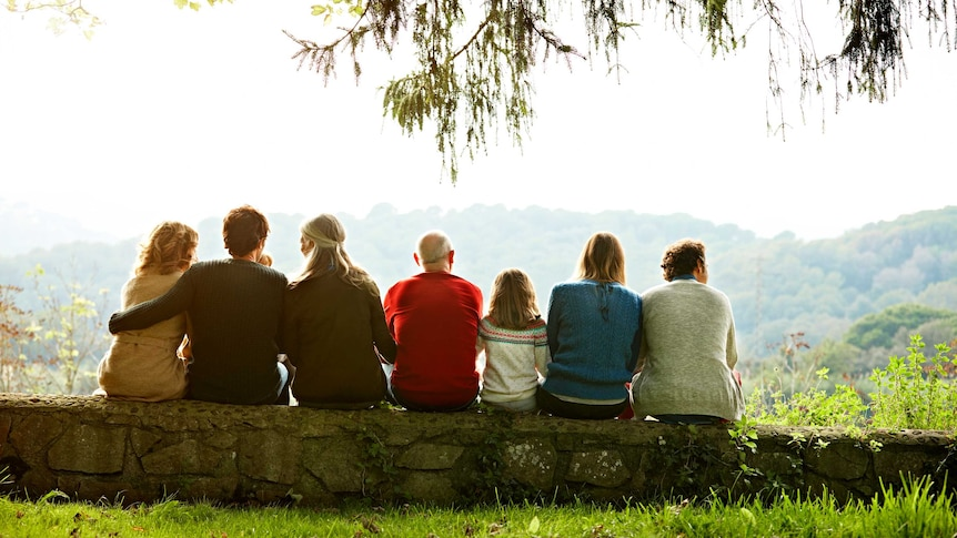 A rear view of multi-generation family relaxing in row on retaining wall against clear sky.