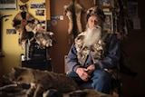 A man with a big grey beard sits in a room surrounded by feral cat skins looking blankly at the camera