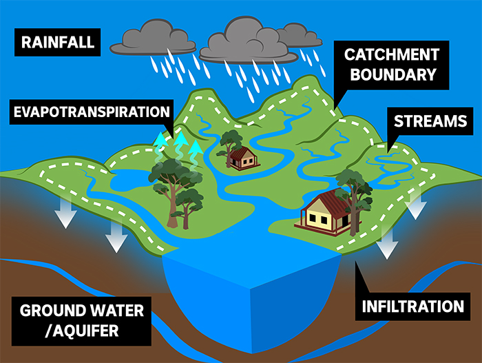 water catchment illustration