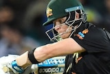 Steve Smith batting for Australia