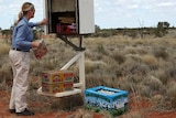 An outback postie delivers the mail