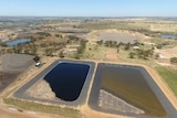 A drone view of a large patch of land.