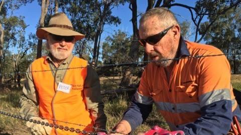 Volunteers work on repairing fences torn down by floods from Cyclone Debbie.