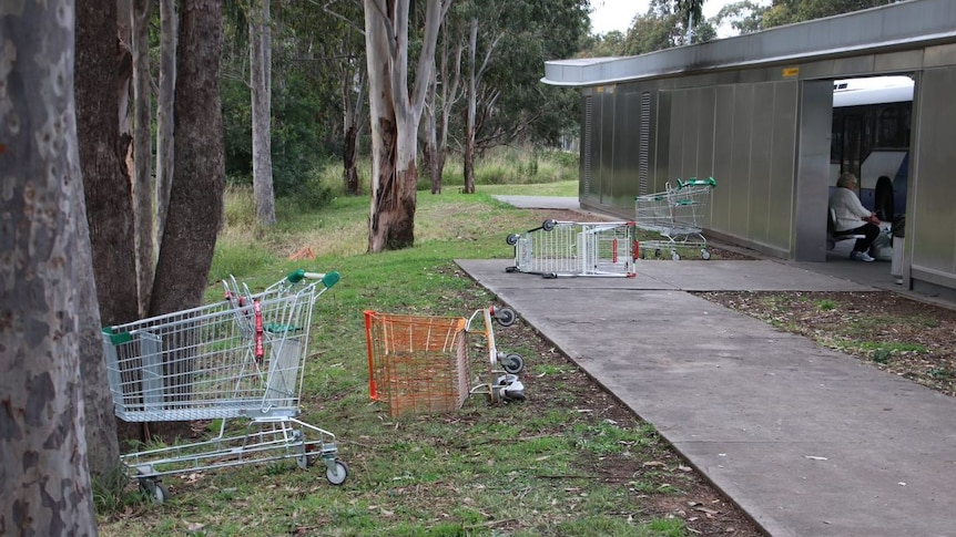 How Sydney council forced major supermarkets to take action over 'nuisance' shopping trolleys