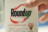 A bottle of Roundup.