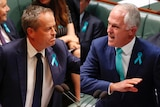 Bill Shorten and Malcolm Turnbull trade barbs during Question Time.