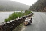 A boulder on the side of the Tasman Highway