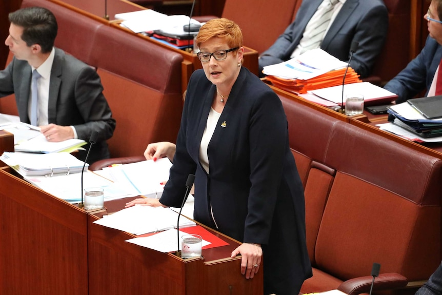 Defence Minister Marise Payne stands to speak in the Senate, wearing a navy blue jacket, while her colleagues remain seated