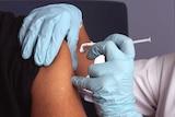 如果下一阶段试验成功,澳大利亚政府将立即生产牛津大学的疫苗并免费全民接种。