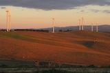 Wind turbines near Canberra