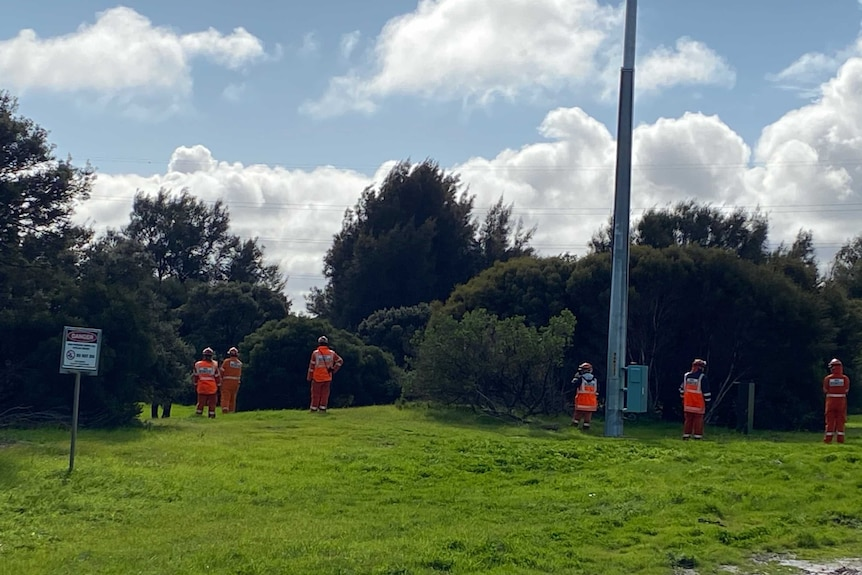 Six people dressed in fluro with their backs to the camera can be seen at a wetlands area with several trees.