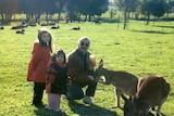 Two young girls stand next to their father who is crouching and feeding a kangaroo.