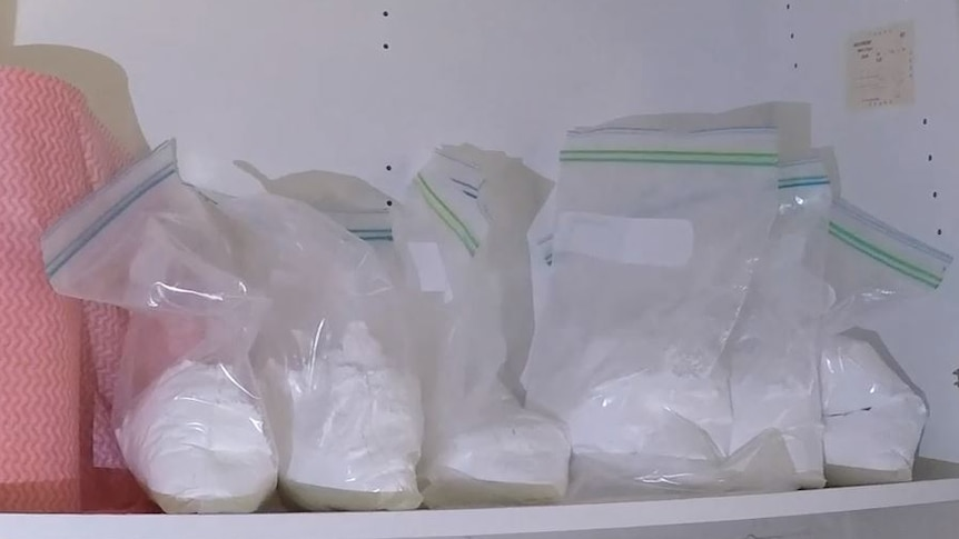 Several large ziplock bags filled with white powder.