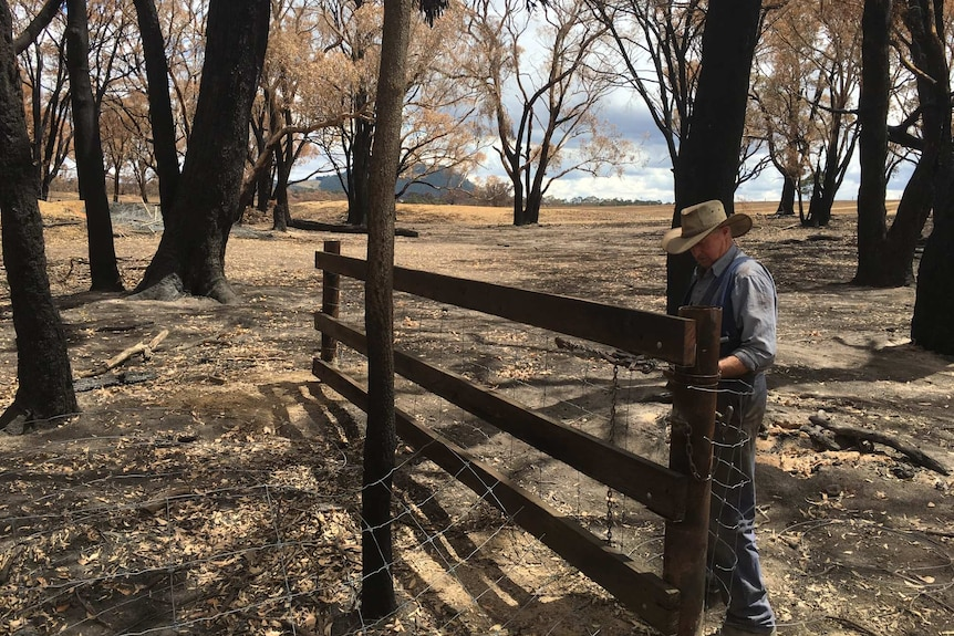 Graham Shearer inspecting fencing on his Scotsburn, Victoria property.