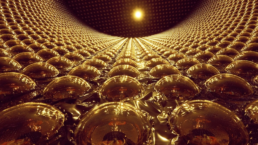 A view inside Super Kamiokande looking up at the ceiling.