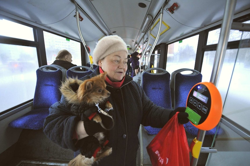 A woman holds her dog while she scans a card on a bus.