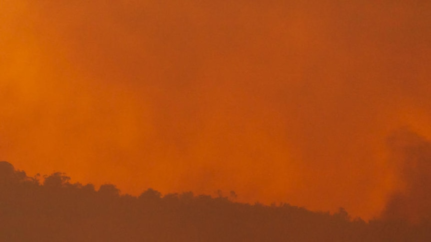 Out of control: a fierce fire in Perth's north-eastern suburbs