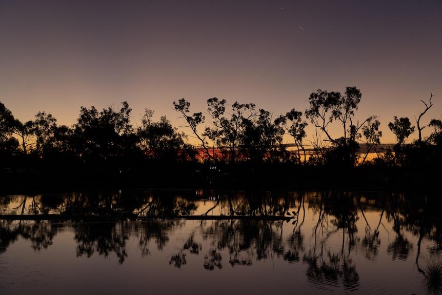 The sun sets behind trees at Lara Wetlands