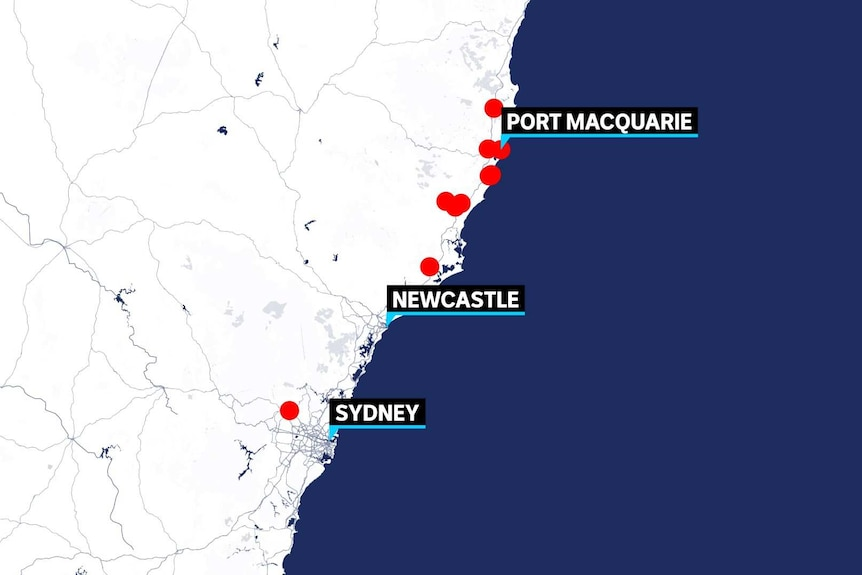 A graphic of nsw shows port mac, newcastle and sydney