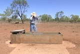 Farmer Luke Chaplain tips his hat full of water on his head from a water trough at Cloncurry.