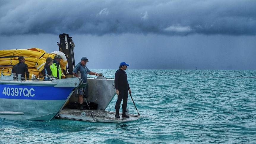 Wet and windy weather has made it difficult to install underwater nets to help coral regrow on the reef.