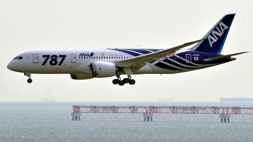 All Nippon Airways plane lands in Tokyo