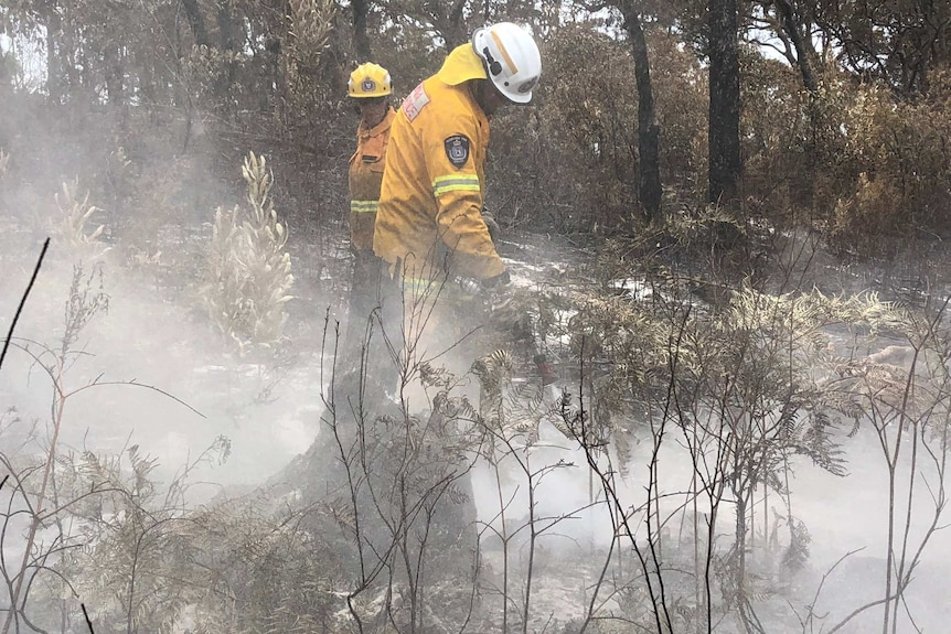 QFES firefighters extinguishing fires in bushland.