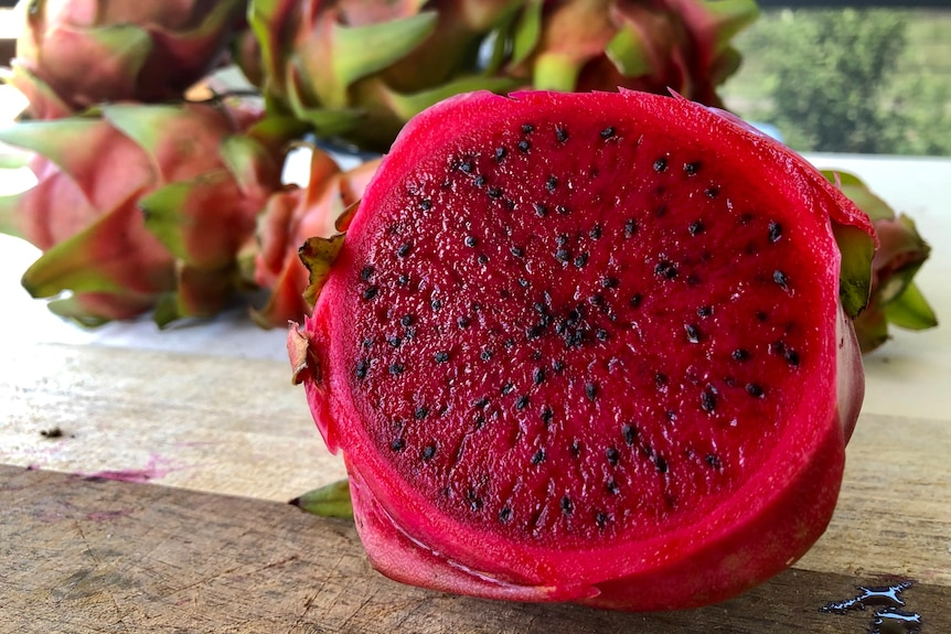 A close up shot of a sliced dragon fruit with its vibrant red interior and tiny black seeds.