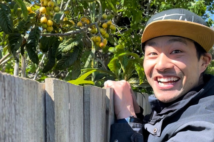 A man peaks over a fence smiling with a loquat tree in the background
