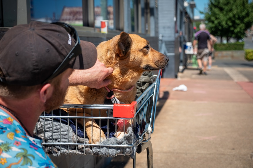 Rob pats his dog Arasmas outside a soup kitchen in Toowoomba, March 2021.