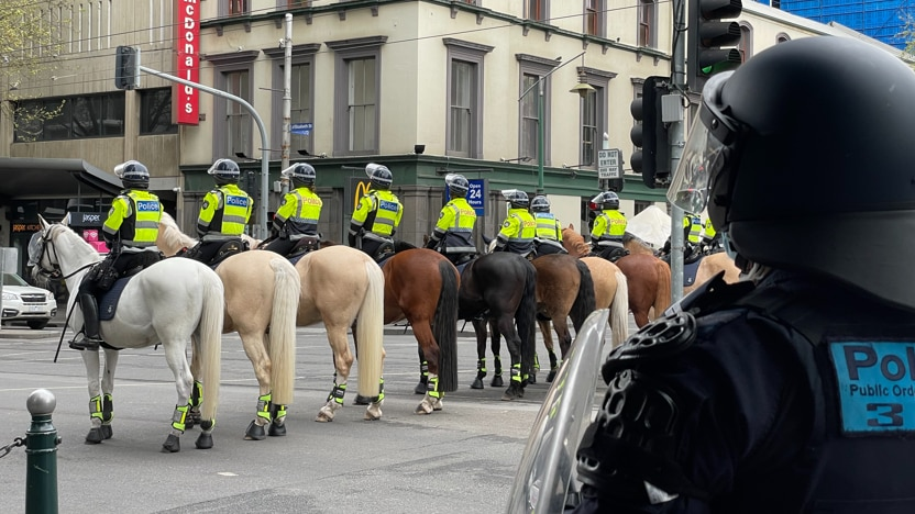 A row of mounted police.