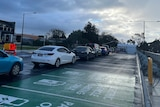 Seven cars wait in a line outside a tent for coronavirus testing
