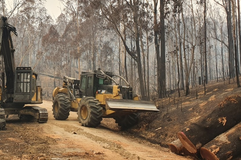 Front-end loader clearing trees in fire damaged forests in East Gippsland